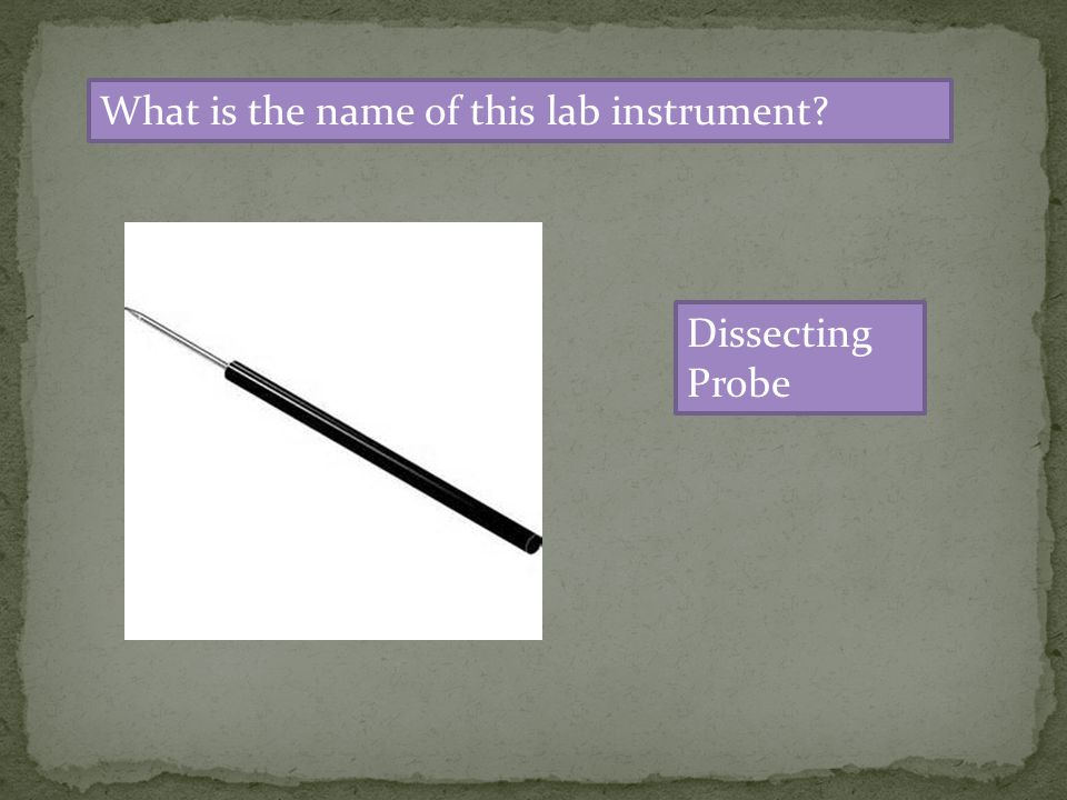 What is the name of this lab instrument? Dissecting Probe