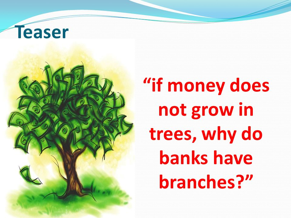 Teaser if money does not grow in trees, why do banks have branches?