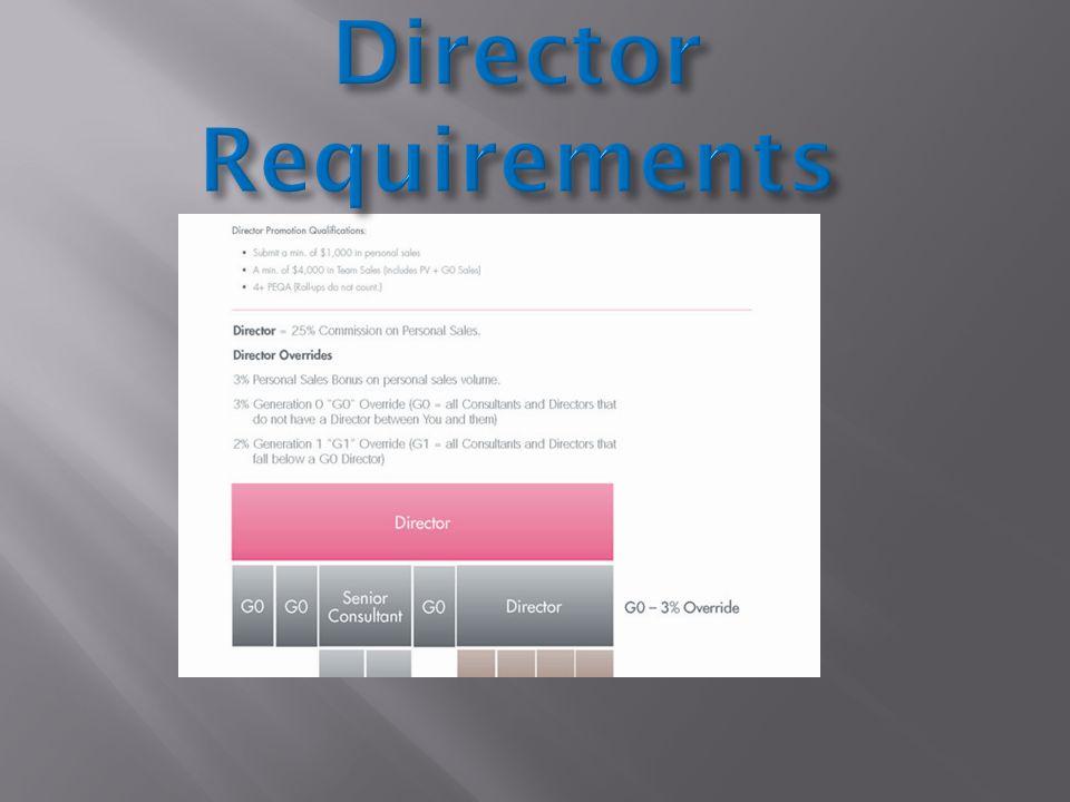 Director Bonus & DIQ Process