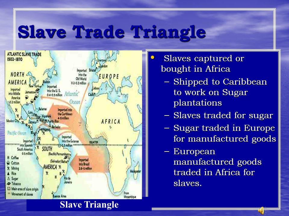 Slave Trade Triangle : Slaves captured or bought in Africa : Slaves captured or bought in Africa – Shipped to Caribbean to work on Sugar plantations –