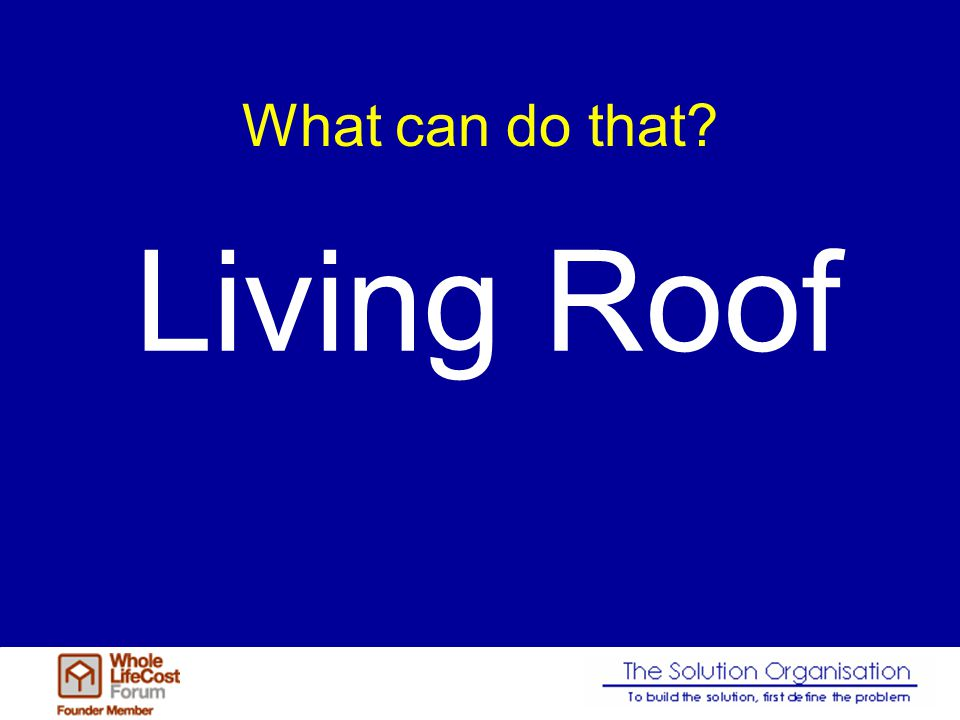 Living roofs Make money – Contribute to saving the planet Improve the working environment Sustainability in action lots of it.