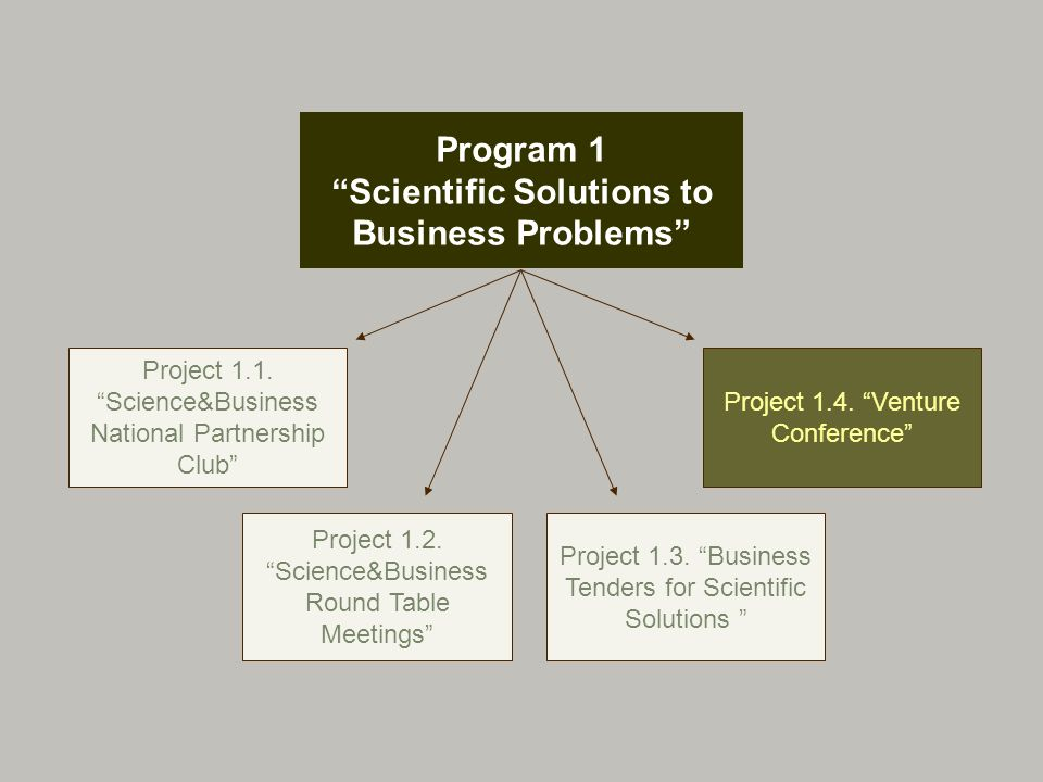 Program 1 Scientific Solutions to Business Problems Project 1.1.