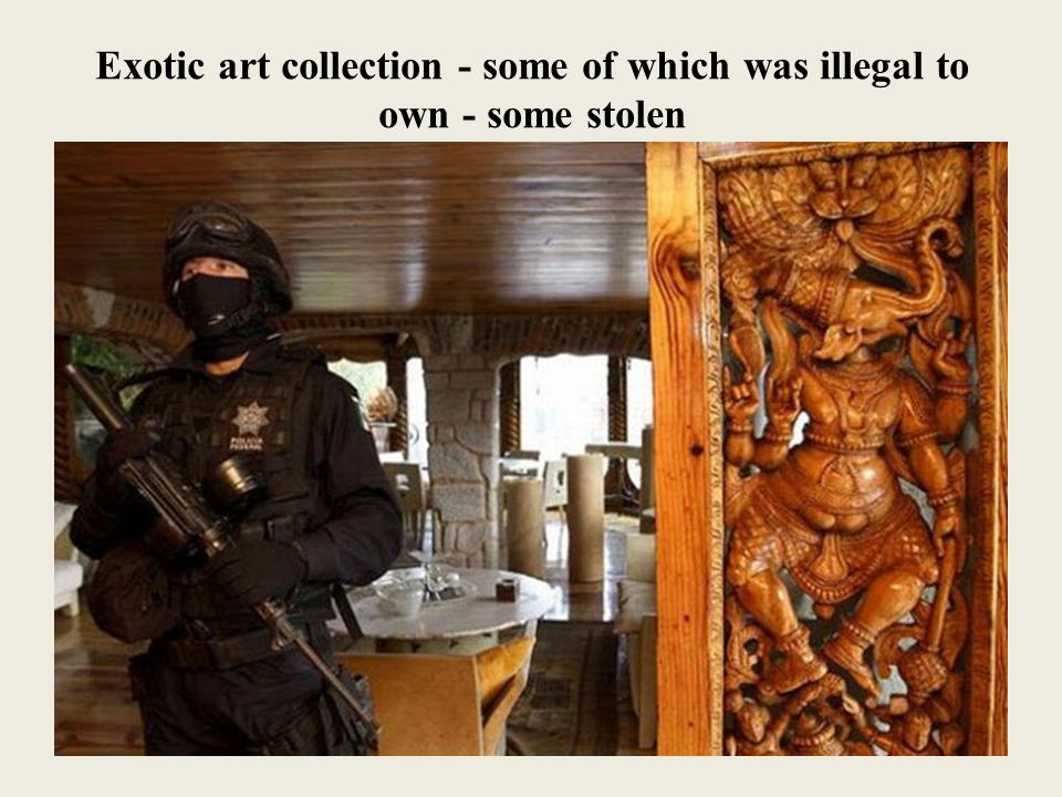 Exotic art collection - some of which was illegal to own - some stolen