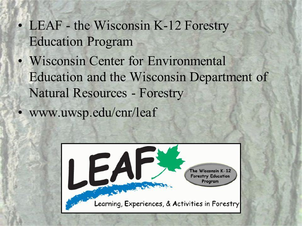 LEAF - the Wisconsin K-12 Forestry Education Program Wisconsin Center for Environmental Education and the Wisconsin Department of Natural Resources -