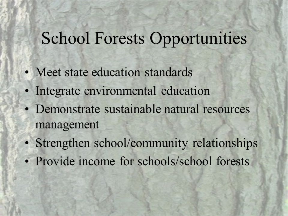 School Forests Opportunities Meet state education standards Integrate environmental education Demonstrate sustainable natural resources management Str