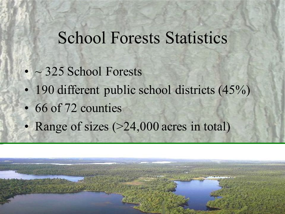 School Forests Statistics ~ 325 School Forests 190 different public school districts (45%) 66 of 72 counties Range of sizes (>24,000 acres in total)