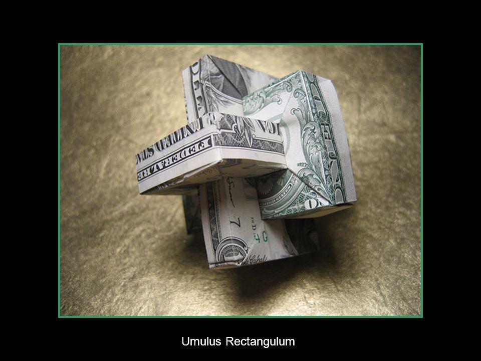 Joes Dollar