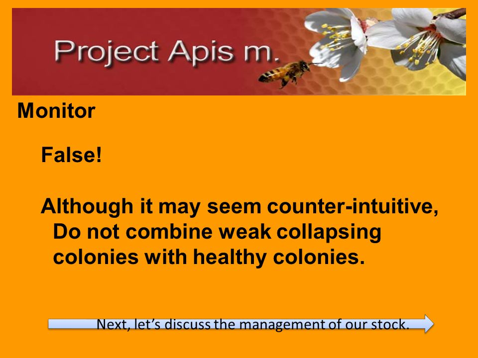 Be mindful of colony placement to minimize stress.