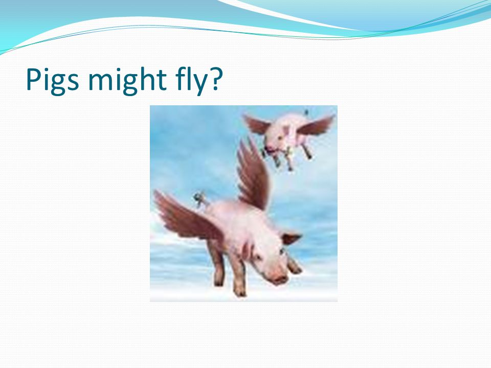 Pigs might fly?