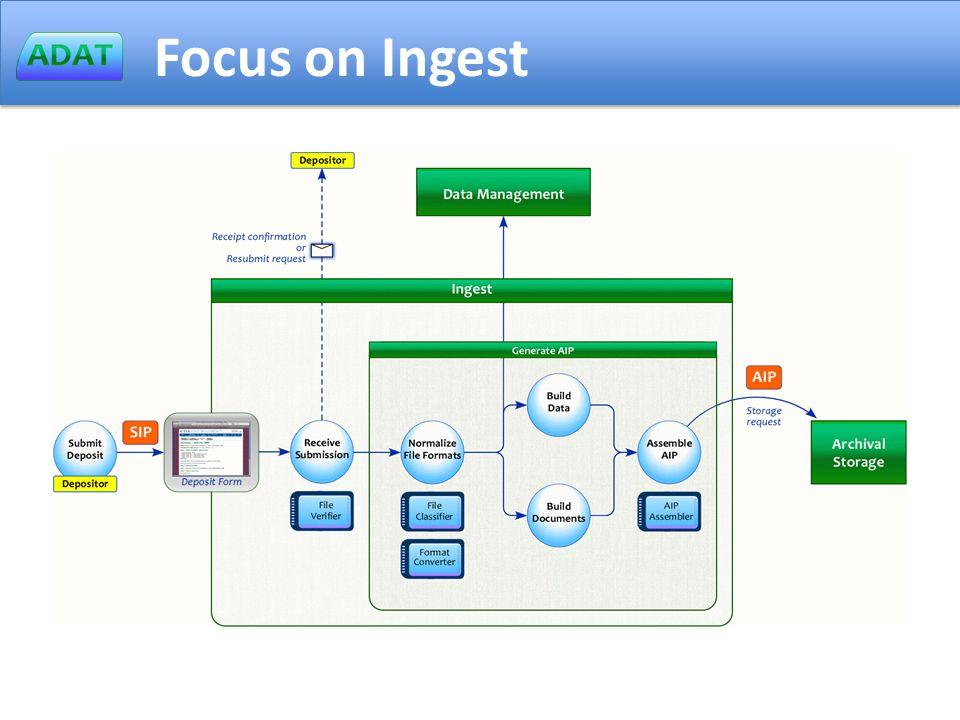Focus on Ingest