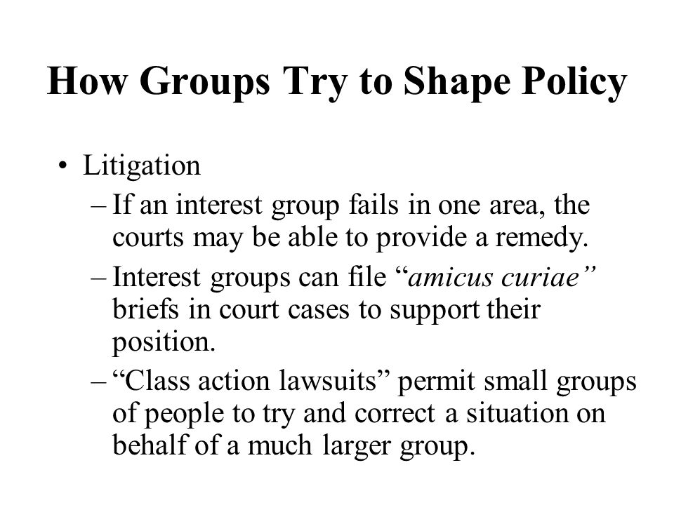 How Groups Try to Shape Policy Litigation –If an interest group fails in one area, the courts may be able to provide a remedy.
