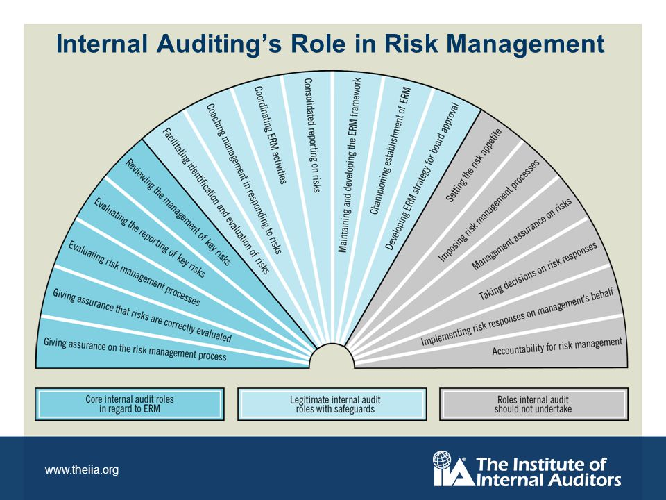www.theiia.org Internal Auditings Role in Risk Management