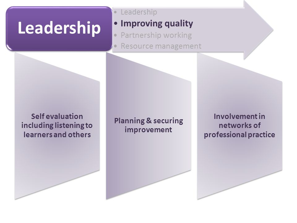 Self evaluation including listening to learners and others Planning & securing improvement Involvement in networks of professional practice Leadership Improving quality Partnership working Resource management