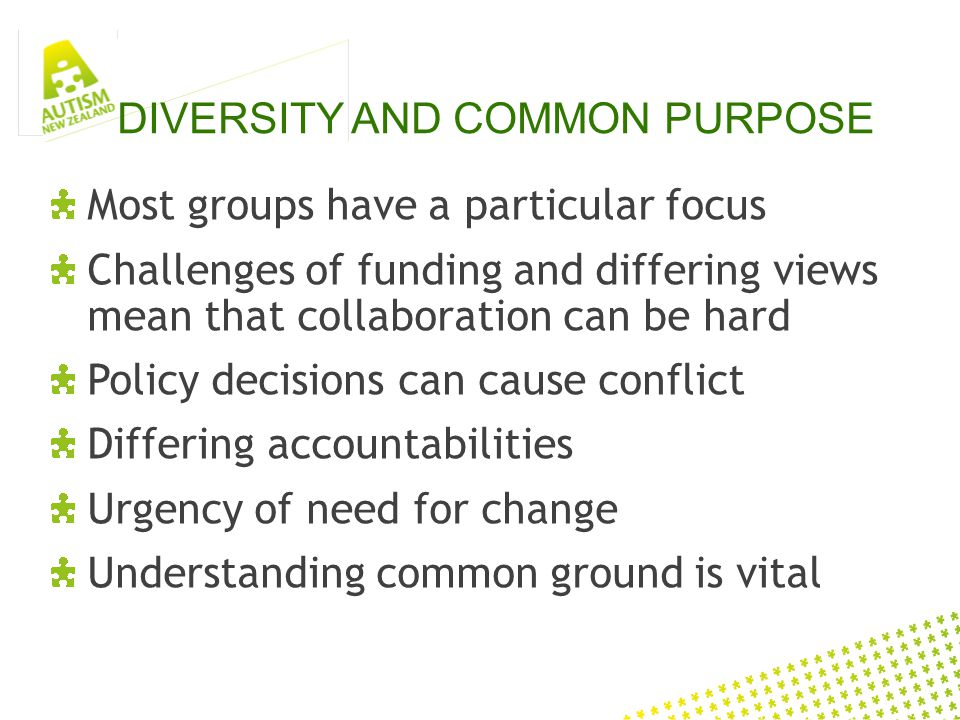 DIVERSITY AND COMMON PURPOSE Most groups have a particular focus Challenges of funding and differing views mean that collaboration can be hard Policy decisions can cause conflict Differing accountabilities Urgency of need for change Understanding common ground is vital