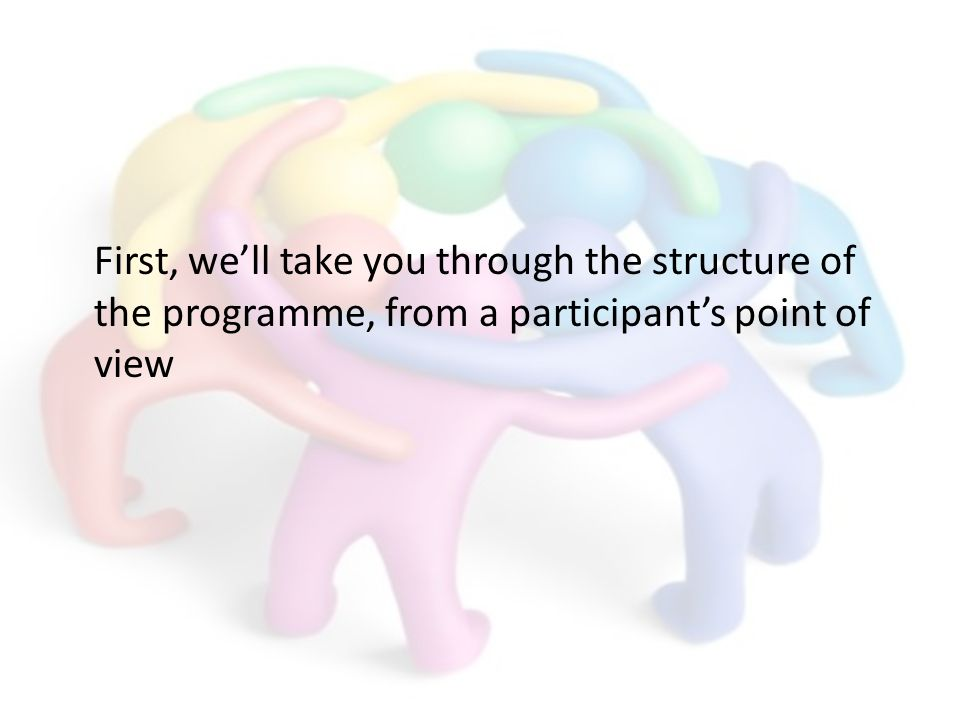 First, well take you through the structure of the programme, from a participants point of view
