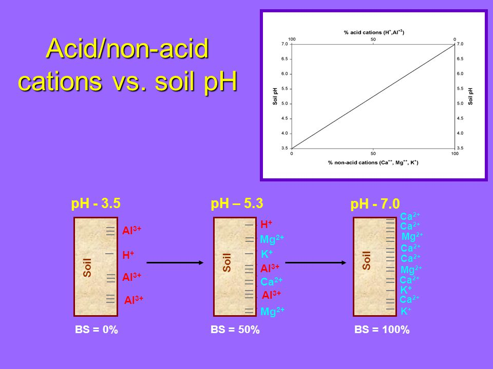 Soil pH Buffering Capacity can be expressed in units of meq H + (kg soil) -1 (pH) -1 multiplied by 50 mg CaCO 3 (meq) -1 it can be expressed in units of mg CaCO 3 (kg soil) -1 (pH) -1