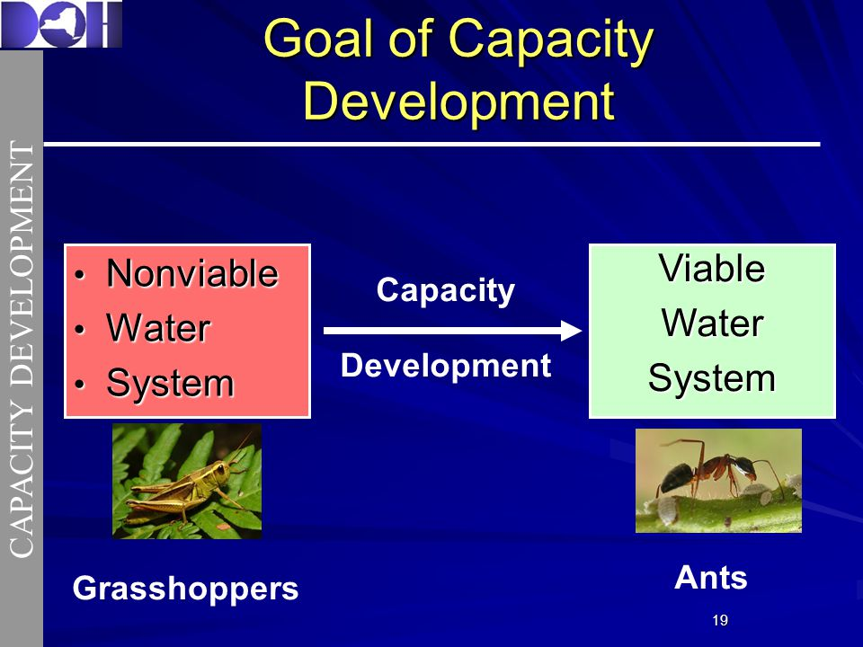 1919 Goal of Capacity Development Nonviable Nonviable Water Water System SystemViableWaterSystem Capacity Development CAPACITY DEVELOPMENT Grasshoppers Capacity Development Capacity Development Capacity Development Ants