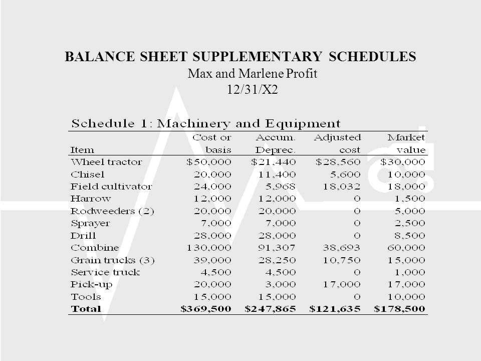 BALANCE SHEET SUPPLEMENTARY SCHEDULES Max and Marlene Profit 12/31/X2