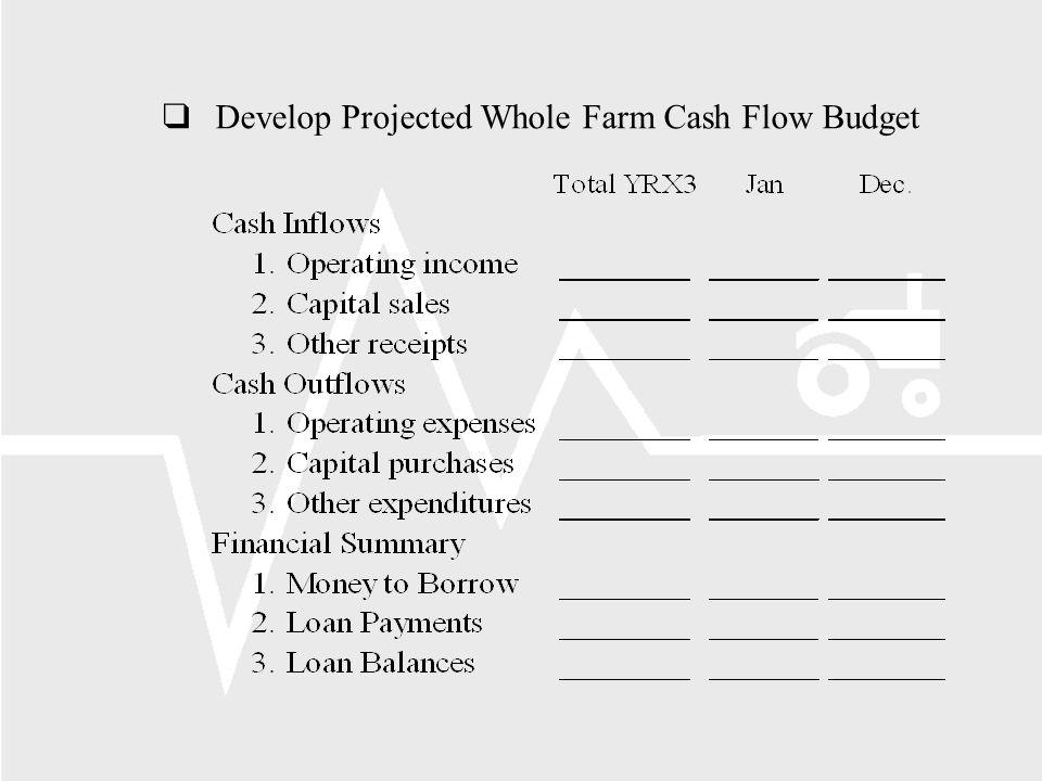qDevelop Projected Whole Farm Cash Flow Budget
