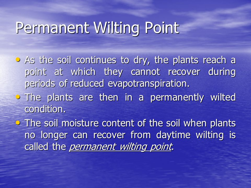 Permanent Wilting Point As the soil continues to dry, the plants reach a point at which they cannot recover during periods of reduced evapotranspirati