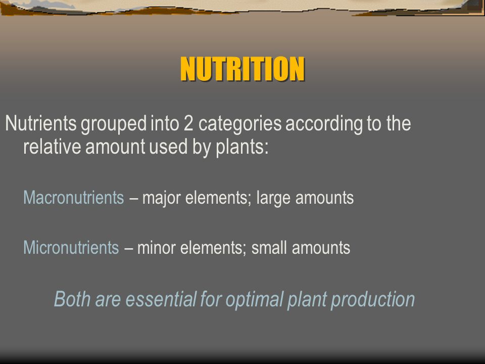 NUTRITION There are at least 17 elements recognized as essential nutrients for plants; we will recognize 18 elements: C, H, O, P, K, N, S, Ca, Fe, Mg, Mn, Mo, Cl, Cu, Zn, B, Co, Ni