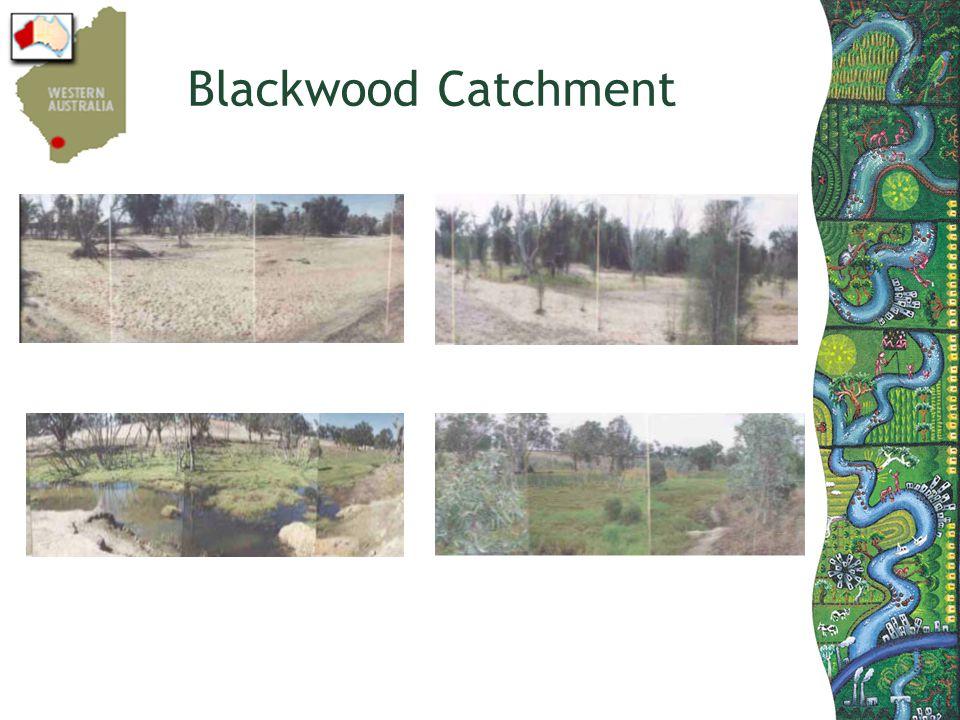 Blackwood Catchment