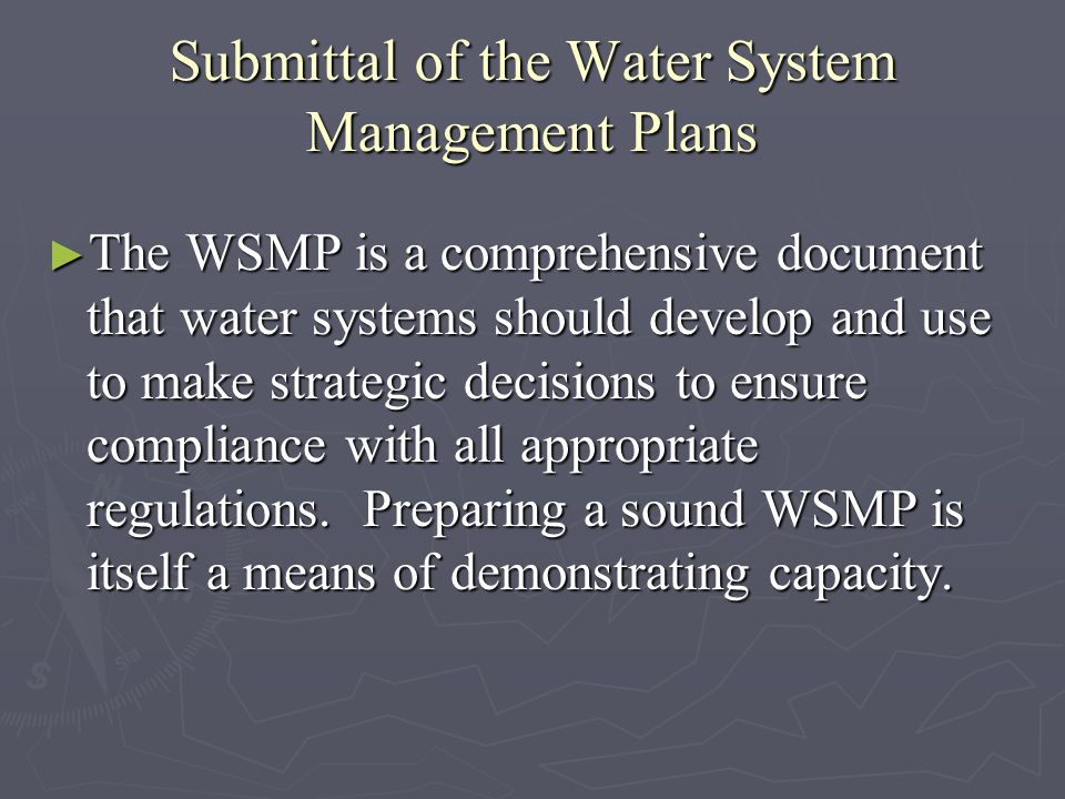 Submittal of the Water System Management Plans The WSMP is a comprehensive document that water systems should develop and use to make strategic decisions to ensure compliance with all appropriate regulations.
