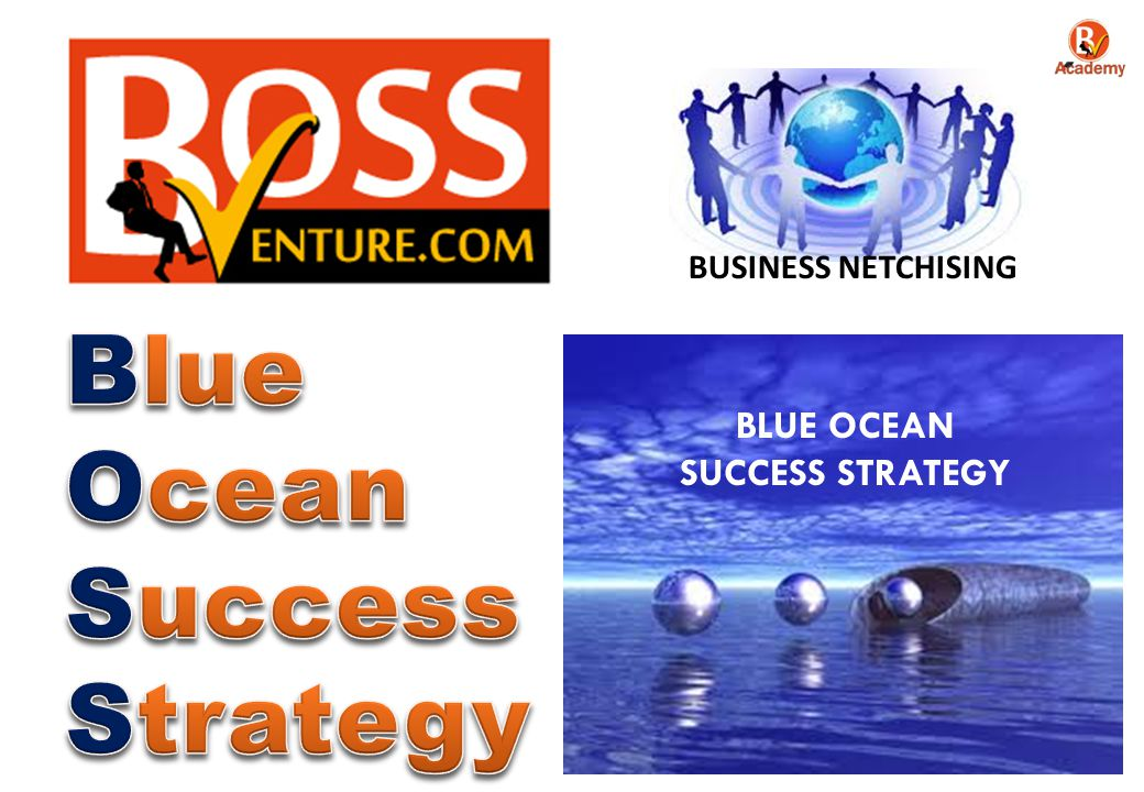 BLUE OCEAN SUCCESS STRATEGY BUSINESS NETCHISING