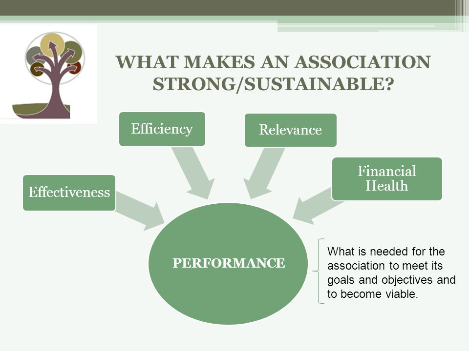 PERFORMANCE Effectiveness EfficiencyRelevance Financial Health What is needed for the association to meet its goals and objectives and to become viable.