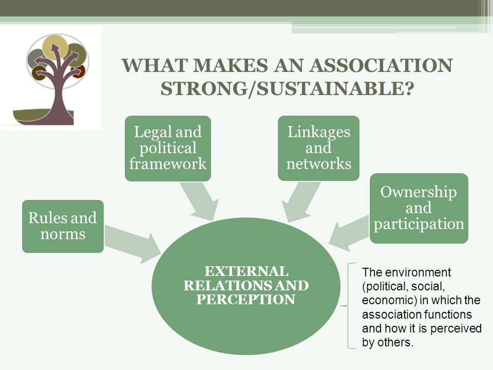 EXTERNAL RELATIONS AND PERCEPTION Rules and norms Legal and political framework Linkages and networks Ownership and participation The environment (political, social, economic) in which the association functions and how it is perceived by others.