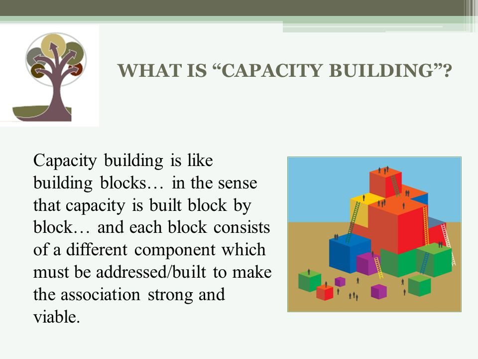 WHAT IS CAPACITY BUILDING.