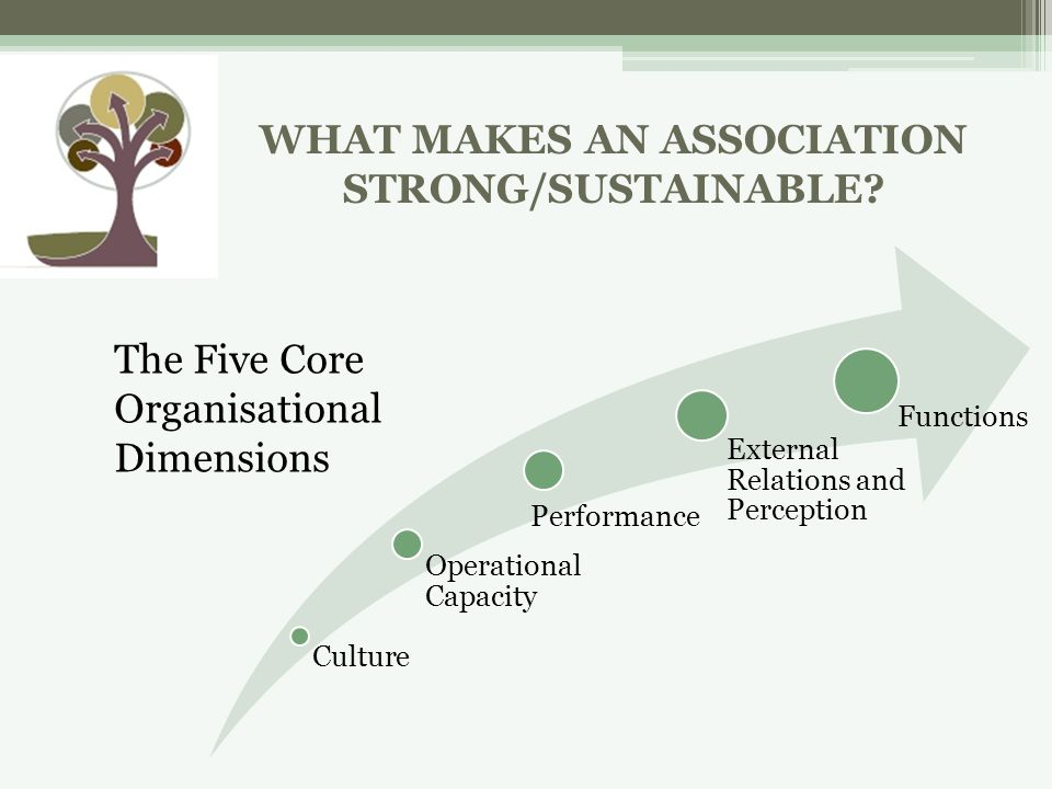 WHAT MAKES AN ASSOCIATION STRONG/SUSTAINABLE.