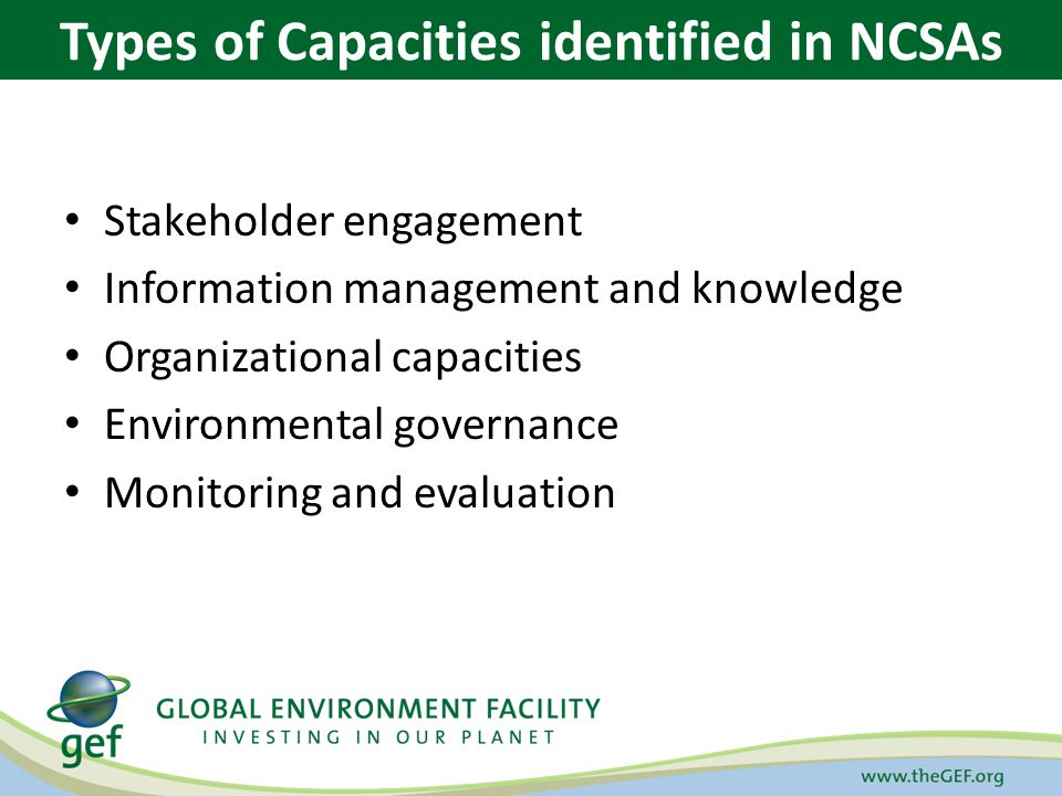 Stakeholder engagement Information management and knowledge Organizational capacities Environmental governance Monitoring and evaluation Types of Capa