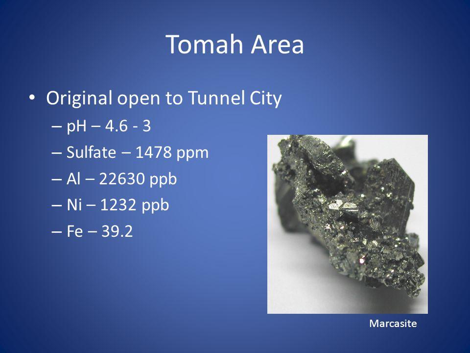 Tomah Area Original open to Tunnel City – pH – 4.6 - 3 – Sulfate – 1478 ppm – Al – 22630 ppb – Ni – 1232 ppb – Fe – 39.2 Marcasite