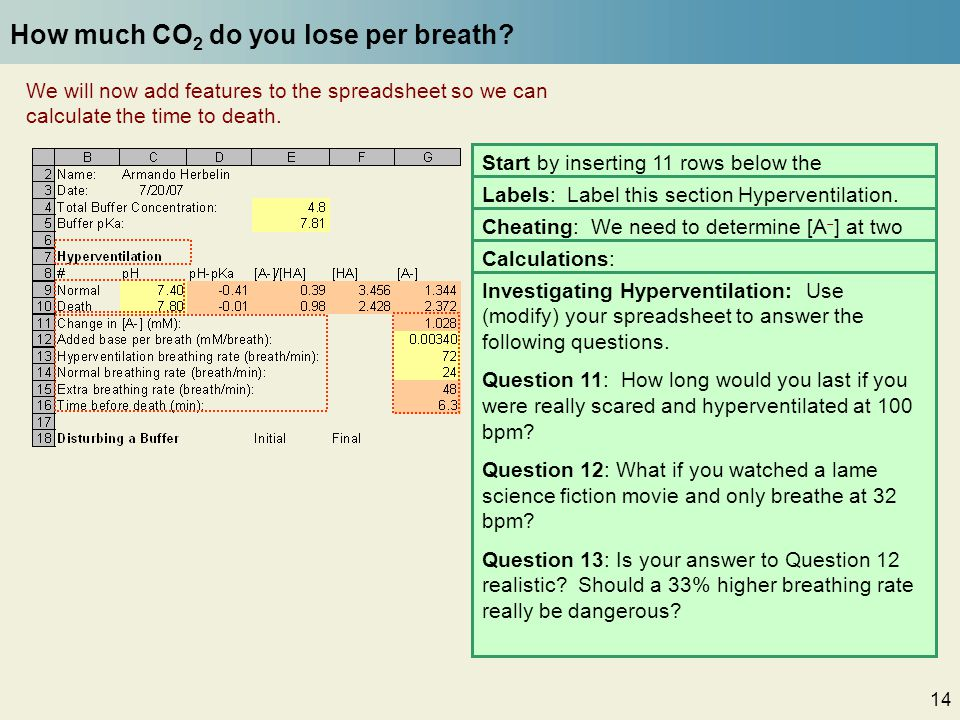 14 How much CO 2 do you lose per breath? We will now add features to the spreadsheet so we can calculate the time to death. Start by inserting 11 rows