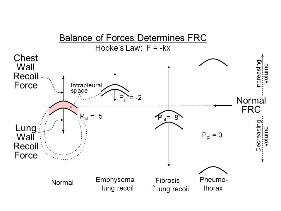 Chest Wall Recoil Force Lung Wall Recoil Force P pl = 0 P pl = -2 Normal Emphysema lung recoil Fibrosis lung recoil Pneumo- thorax P pl = -8 Balance o