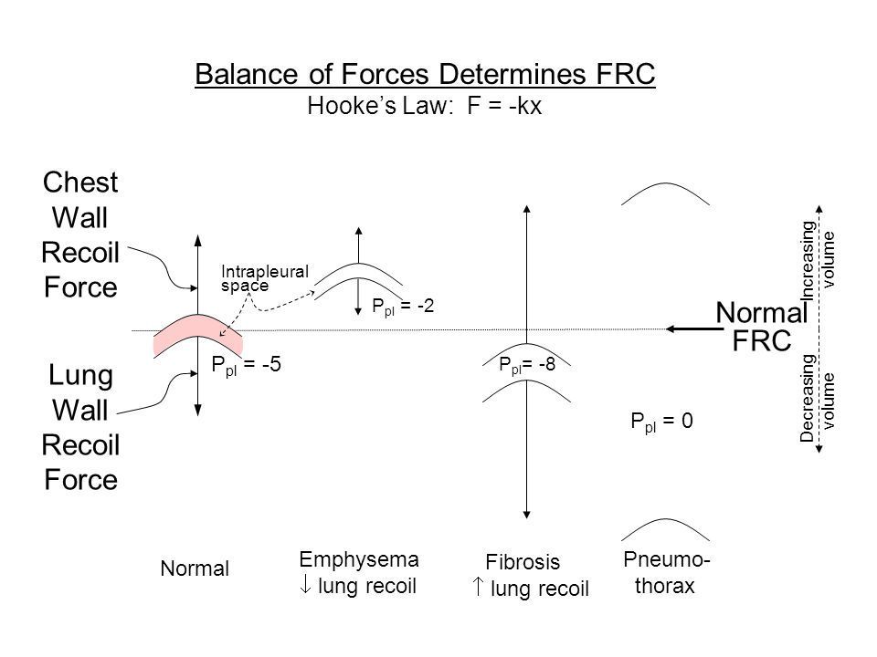 Chest Wall Recoil Force Lung Wall Recoil Force Normal FRC P pl = -5 Normal Balance of Forces Determines FRC Hookes Law: F = -kx Intrapleural space Inc
