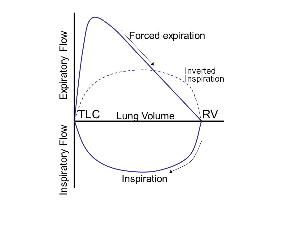 Inverted Inspiration RV Expiratory Flow Forced expiration Inspiration Inspiratory Flow TLC Lung Volume