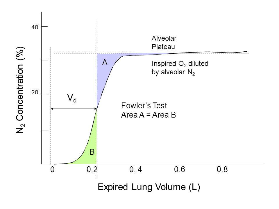 Expired Lung Volume (L) 0 0.2 0. 4 0.6 0.8 Alveolar Plateau Inspired O 2 diluted by alveolar N 2 N 2 Concentration (%) 20 40 A B Fowlers Test Area A =