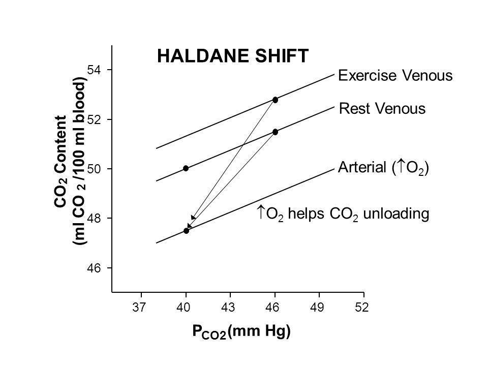 O 2 helps CO 2 unloading Arterial ( O 2 ) Exercise Venous 374043464952 46 48 50 52 54 Rest Venous P CO2 (mm Hg) CO 2 Content (ml CO 2 /100 ml blood) H