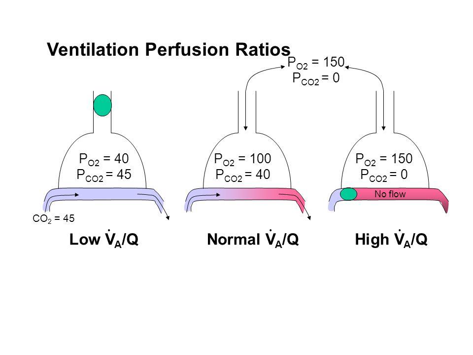 P O2 = 40 P CO2 = 45 Normal V A /QLow V A /QHigh V A /Q CO 2 = 45 P O2 = 150 P CO2 = 0 P O2 = 100 P CO2 = 40 P O2 = 150 P CO2 = 0... Ventilation Perfu