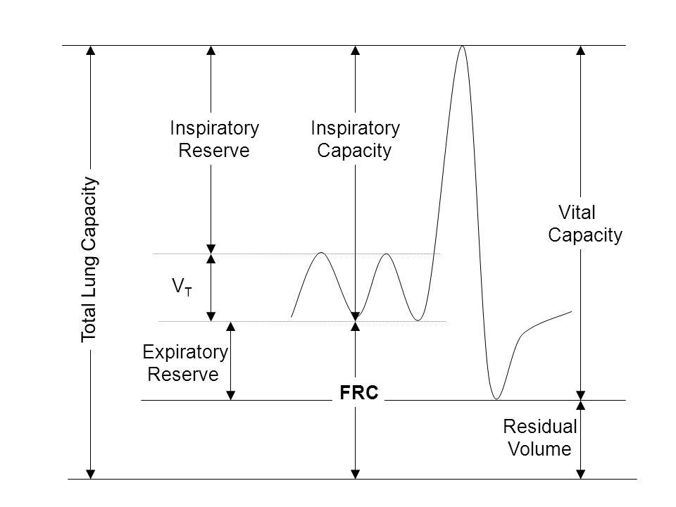 VTVT Total Lung Capacity Expiratory Reserve Inspiratory Reserve FRC Inspiratory Capacity Residual Volume Vital Capacity