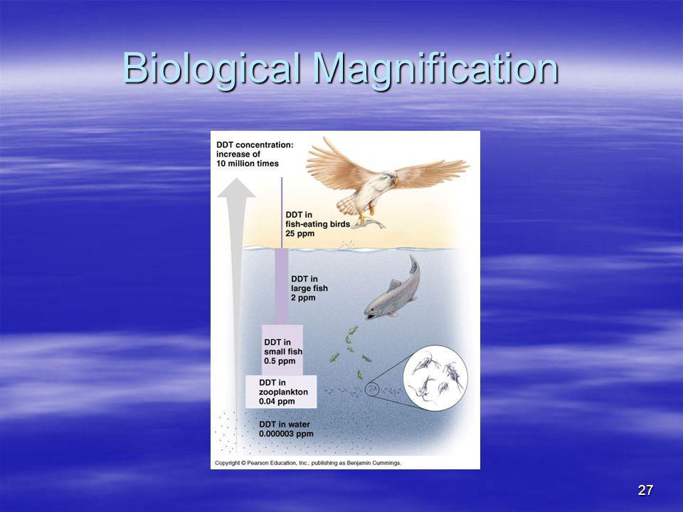 27 Biological Magnification