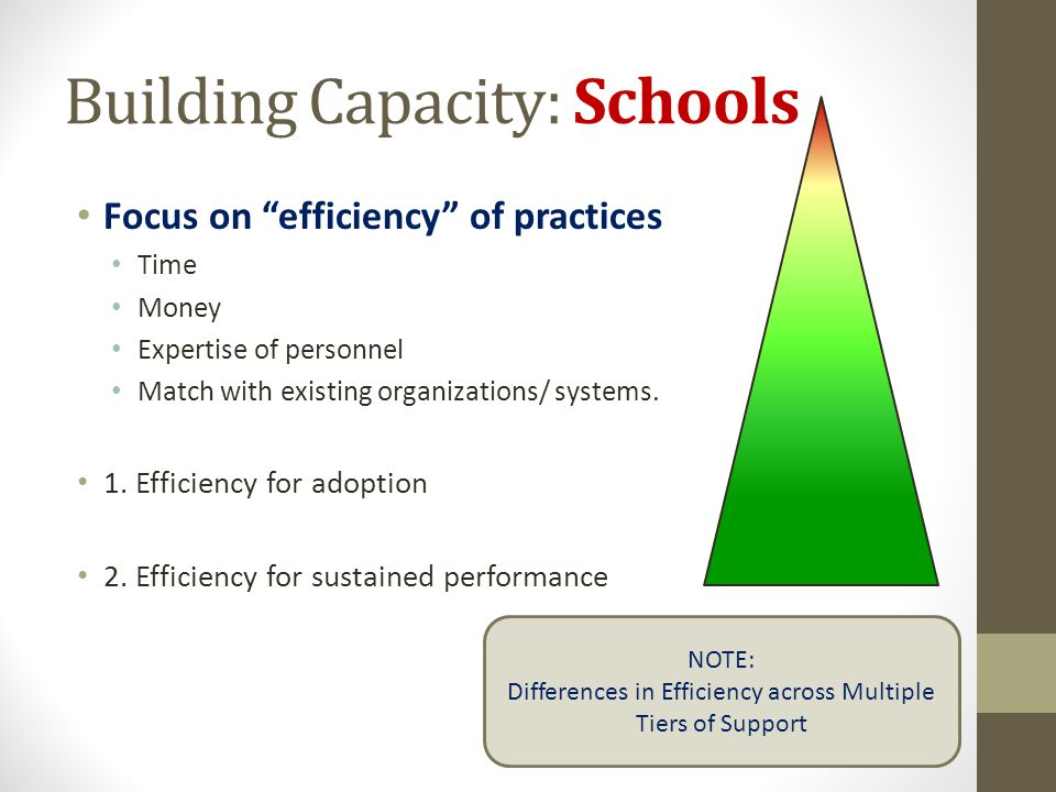 Building Capacity: Schools Focus on efficiency of practices Time Money Expertise of personnel Match with existing organizations/ systems. 1. Efficienc