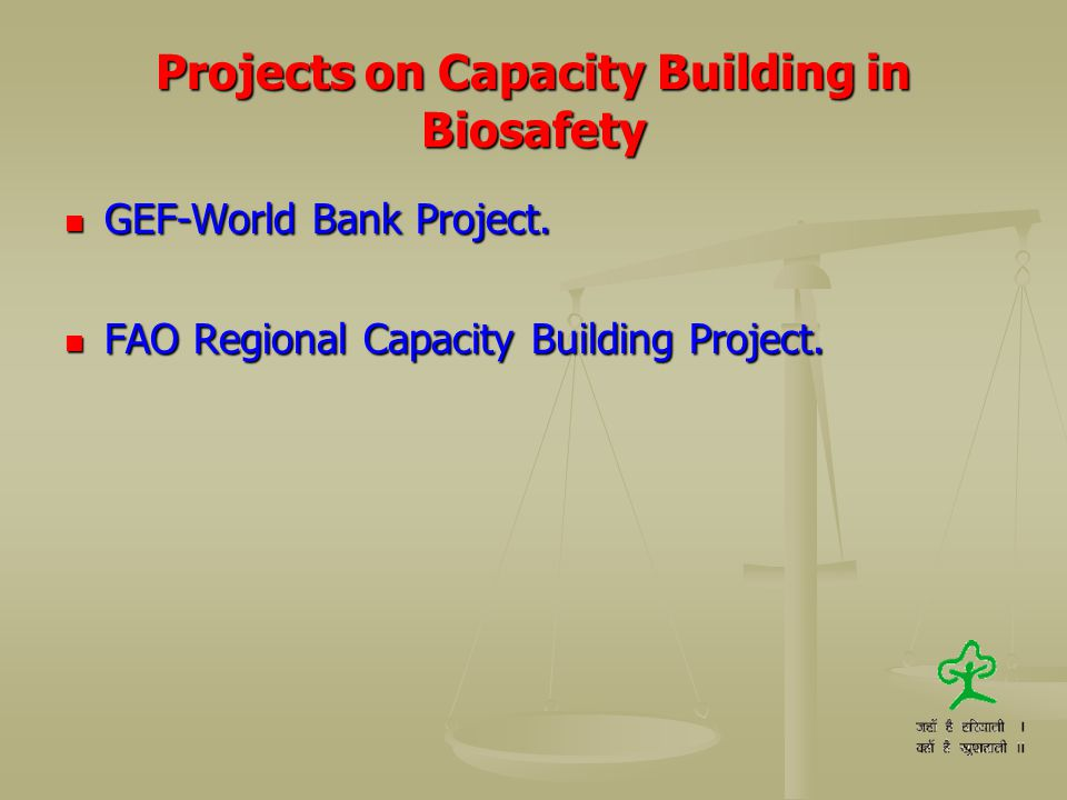 Projects on Capacity Building in Biosafety GEF-World Bank Project. GEF-World Bank Project. FAO Regional Capacity Building Project. FAO Regional Capaci