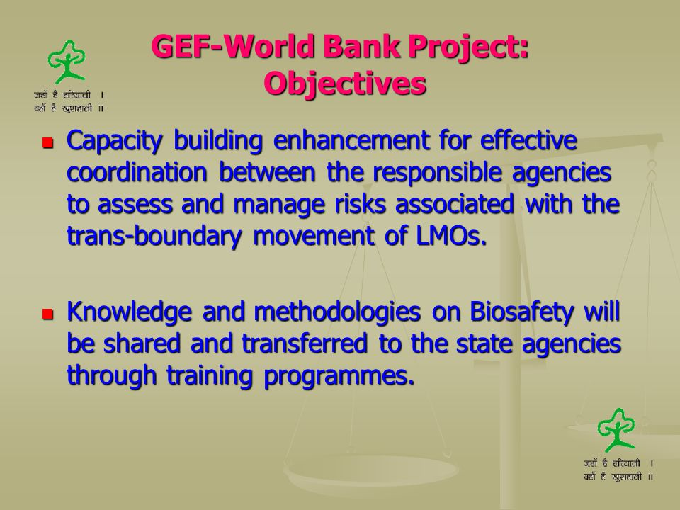 GEF-World Bank Project: Objectives Capacity building enhancement for effective coordination between the responsible agencies to assess and manage risk