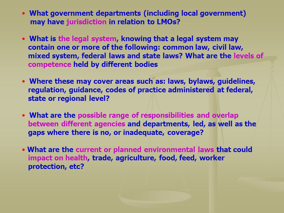 What government departments (including local government) may have jurisdiction in relation to LMOs? What is the legal system, knowing that a legal sys