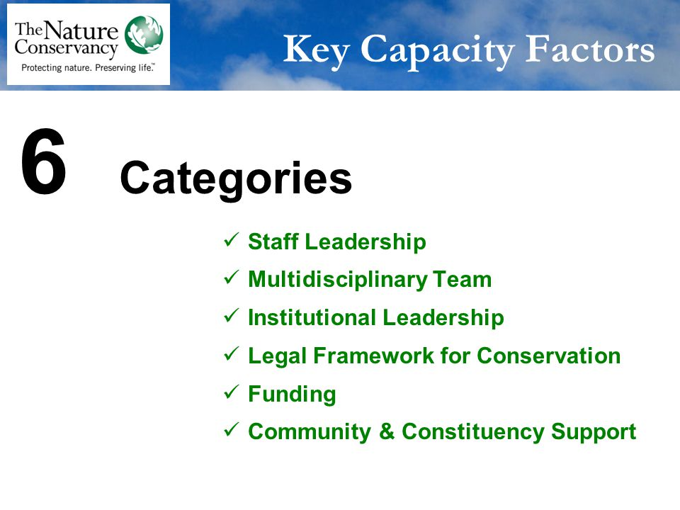 Staff Leadership Focused staff responsibility - project director who has the core competencies needed Key Capacity Factors