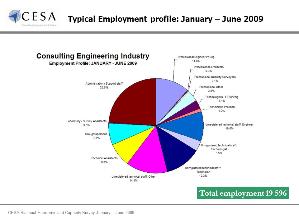 CESA Biannual Economic and Capacity Survey January – June 2009 Typical Employment profile: January – June 2009 Total employment 19 596