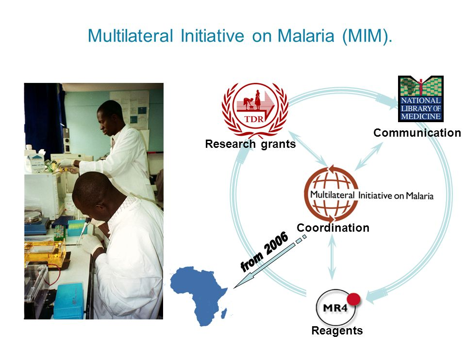 Multilateral Initiative on Malaria (MIM). Reagents Communication Research grants Coordination